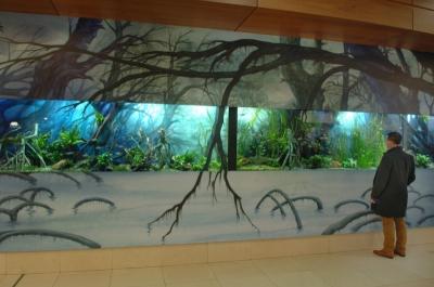 aquarium WaSC 10