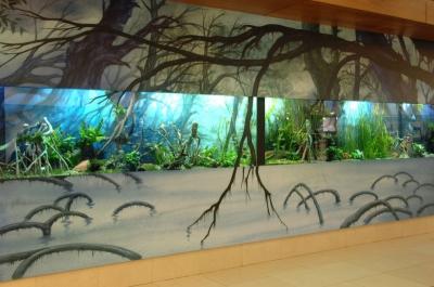 aquarium WaSC 7