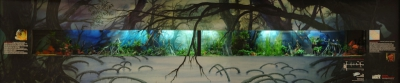 aquarium WaSC panorama